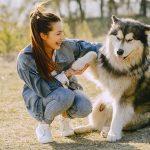 Come educare un cane: la guida per cuccioli e adulti