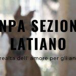 ENPA Sezione Latiano - Una realtà dell'amore per gli animali, docufilm di Paola Ghislieri